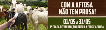 Banner Jornal 350